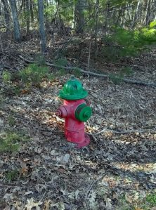 red and green fire hydrant