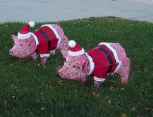 Pigs in Santa Suit