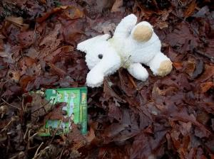 lottery ticket, lost stuffed animal